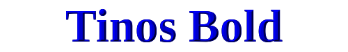 Tinos Bold
