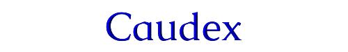 Caudex