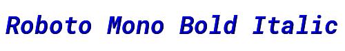 Roboto Mono Bold Italic